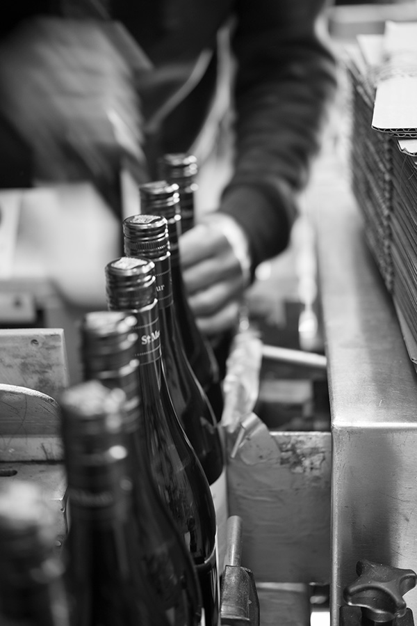Bottling, St Maur Wines, Guy Adamson, Sydney Photographer